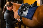 image of girth  - Woman saddle a horse in the stall - JPG