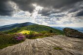 Roan Mountain Appalachian Trail Blue Ridge Mountains Landscape Nc Tn