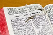 Rosary Bible Page - Song Of Solomon