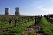 Nuclear Vino