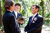 Handsome gay couple getting married in beautiful outdoor ceremony.