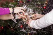 Christmas New Year's Toast
