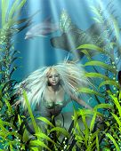 stock photo of long-fish  - Pretty blonde mermaid with green and blue fish scales peering through the seaweed in an underwater scene - JPG