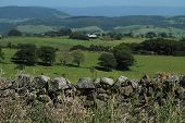 Rock Wall, Rural Scene