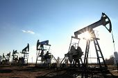 stock photo of pulley  - many working oil pumps silhouette in row against sun - JPG