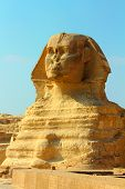 view on famous ancient egypt sphinx in Giza