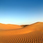 stock photo of oasis  - beatiful evening landscape in desert - JPG