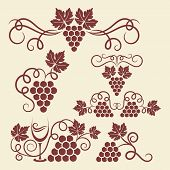 image of grape  - Decorative grape vine elements for design - JPG