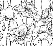 pattern of black and white poppies