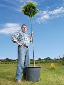 Young man posing with potted oak tree ready for planting in the ground