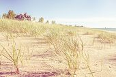picture of dune grass  - Dune grasses with beach house and lighthouse in the distance - JPG