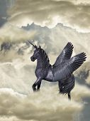 stock photo of pegasus  - Fantasy Horse black pegasus in the heaven - JPG