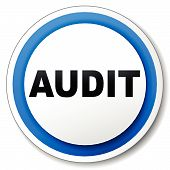 Vector Audit Icon