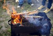 image of brazier  - Birch firewood burning in the brazier for cooking - JPG