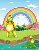 Illustration of a turtle and a frog at the pond with a rainbow in the sky