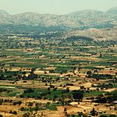 Fields Of Lassithi Plateau(?rete, Greece)