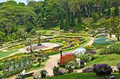 CHIANG RAI PROVINCE, TTHAILAND - APRIL 18, 2011: The most beautiful park in Southeast Asia. Magnificent flower beds, green lawns and tropical trees
