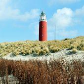 Lighthouse On Island Texel.