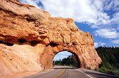 Weg door Zion Nationaal Park
