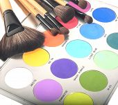 Professional make up palette and brushes