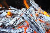 Bonfire, Fire, Wood Coal And Ash