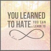 Inspirational Typographic Quote - You learned to hate you can learn to love