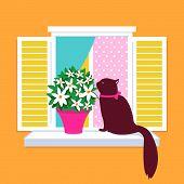 Cat sitting on the window vector