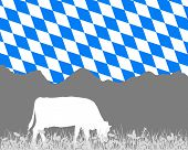 Cow Alp And Bavarian Flag