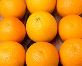 stock photo of sukkot  - many whole fresh oranges on wooden background - JPG