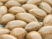 pic of pecan nut  - pecan nuts useful as a background or food concept - JPG
