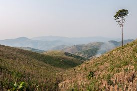 pic of denude  - Ecology global warming and deforestation forest fires droughts the haze season change - JPG