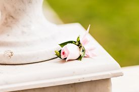 image of coxcomb  - beautiful wedding Boutonniere with rose - JPG