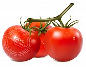 Vector illustration. Tomato. No preservatives.