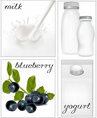 Vector illustration. Elements for design of packing milk dairy. Milky splash. Blueberry.