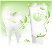 Vector illustration.Tooth and toothpaste with leaves on light green background.