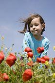 little girl in the corn poppy