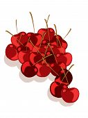Red cherries with drop shadow on a white background