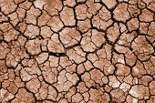 cleft on dried earth