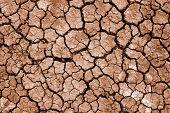 fissura na terra seca