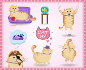 Vector Set Of Cute Cartoon Cat In Life Situations On Pink Background With Paws Frame. poster