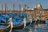 Santa Maria Della Salute Church And Gondolas In Venice, Italy