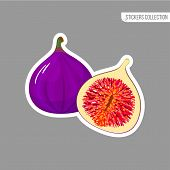 Fig Sticker Isolated On White Background. Bright Vector Illustration Of Colorful Half And Whole Of J poster