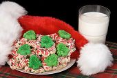 Seasonal Christmas cookie setting for use as Santa?s cookies on Christmas eve, or any type of holiday promotion that requires a holiday inference.