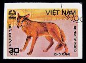 VIETNAM - CIRCA 1980s: A stamp printed in Vietnam shows Cuon Alpinus, series, circa 1980s.
