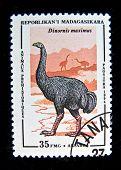 REPUBLIC MADAGASCAR - CIRCA 1994: A stamp printed by REPUBLIC OF MADAGASCAR shows Dinornis maximus, circa 1994.
