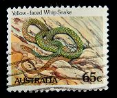AUSTRALIA - CIRCA 1990s: A stamp printed in Australia shows image of a Yellow-faced Whip Snake , ser