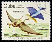 Cuba - CIRCA 1985: A stamp printed in Cuba shows pterodactyl, circa 1985