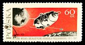 POLAND - CIRCA 1967: A stamp printed in Poland showing Luna 10 - russian space station, circa 1967.  Space Series