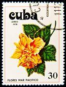 CUBA - por volta de 1978: um selo imprimido em Cuba mostra imagem ter flores pacifista, série, por volta de 1978