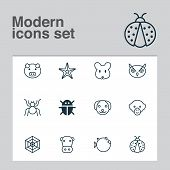 Zoology Icons Set With Mouse, Owl, Cow And Other Puppy Elements. Isolated Vector Illustration Zoolog poster